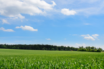 Landwirtschaft Natur