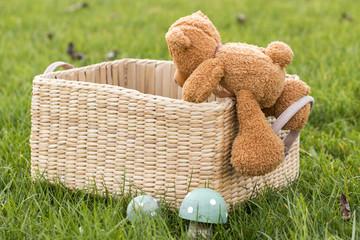 Teddy klettert in Kiste