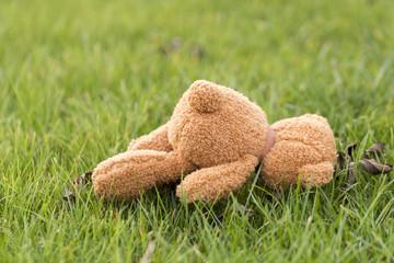 verlorener Teddybär