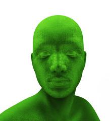 Human green head
