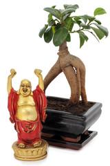 Bonsai mit Buddha - bonsai and buddha