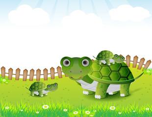 turtle family illustration