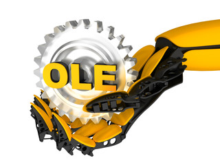 OLE Automation