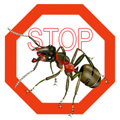 stop ants, stop insect