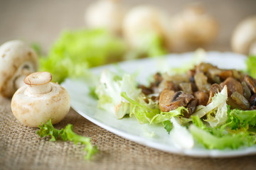 warm salad with mushrooms