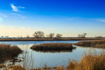 beautiful river Dnepr in Ukraine