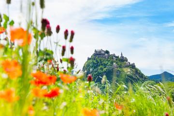 Hochosterwitz castle and poppy flowers