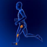 uomo scheletro v corsa dolore infiammazione ginocchio anca