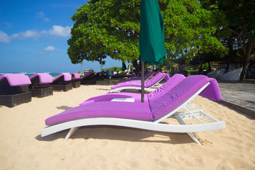 pink lounge chairs on the beach
