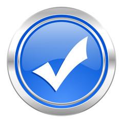 accept icon, blue button, check sign