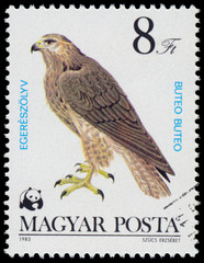 "Stamp printed in Hungary shows ""Bird of prey"""