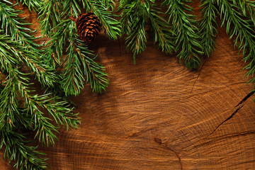 Evergreen tree background