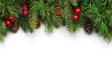 Photo: Christmas tree branches background