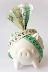 Czech finance - CZK money Czech crown - savings and piggy bank