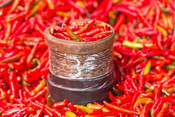 pinte de petits piments rouges, Réunion