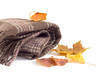 Brown scarf and autumn leaves on a white background