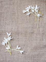 Flower corner  frame design with fabric background