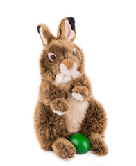 rabbit toy isolated