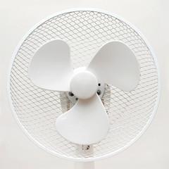 Mechanical fan