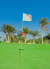 Golf Flag Spread On The Wind