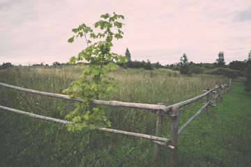 field with fence in the country. Vintage.