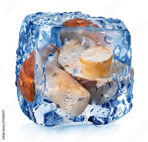 Mushrooms in ice cube - 73609571