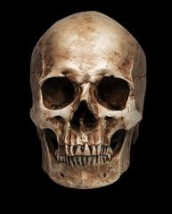 skull-close mouth