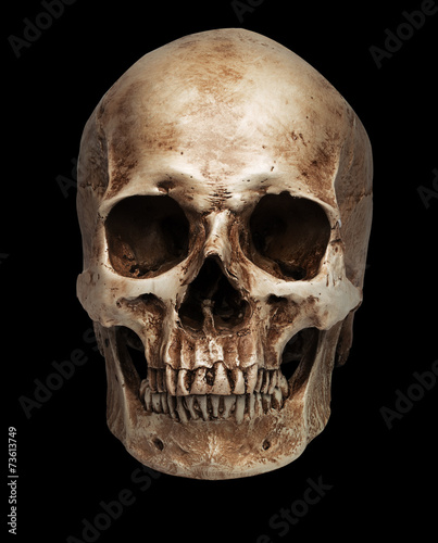 skull-close mouth - 73613749