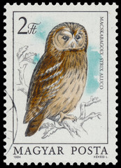 Stamp shows image of a Tawny Owl