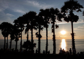 Human and Palm trees silhouette at sunset