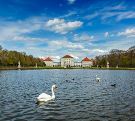 Swan and Nymphenburg Palace. Munich, Bavaria, Germany