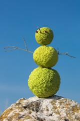 """Subtropical """"snowman"""""""