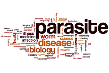 Parasite word cloud