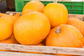 Pumpkins harvest in wooden bowl at market