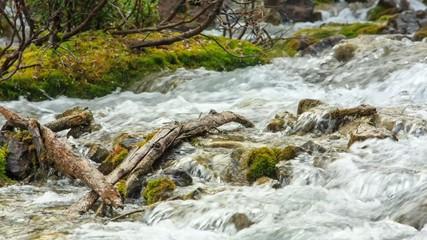 Moraine lake inlet creek in Banff National Park, Canada