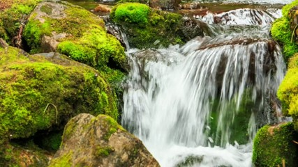 Small waterfall with clear spring water in wild nature