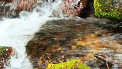 Stream of pure water in the mountain river, close-up