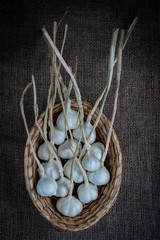 basket with garlic
