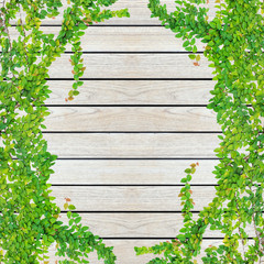 Green ivy and wood texture background