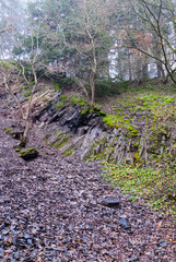Geröllhalde unter einer Bruchkante im Steinbruch am Bromberg
