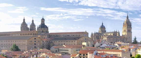 Salamanca cathedral and Clerecia towers.