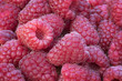 Raspberry group