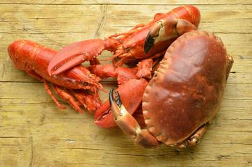 Cangrejo Langosta americana American lobster Expo Milano 2015