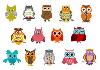 Cartoon cute owl birds