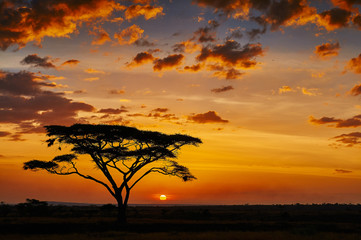 African sunset © lucaar