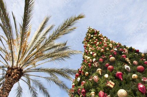Keuken foto achterwand Palm boom Christmas in California