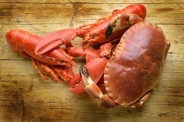 Cangrejo American lobster Amerikanischer Hummer Expo Milan 2015