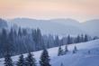 Winter's tale - 73642530