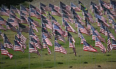 Flags Memorial 9/11