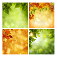 Summer and autumnal assorted backgrounds set for your design